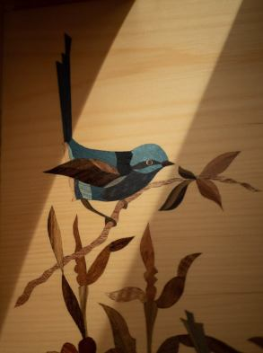 Lou_Wheelan_Photograph_blue_wren_memo_sept26
