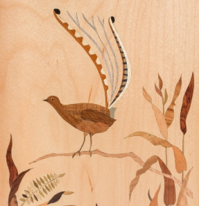 Lyrebird inside door